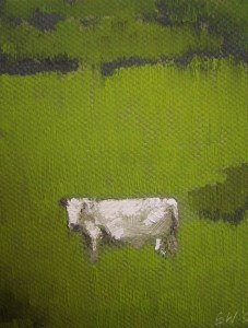 60-small-white-cow